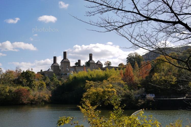 えひめこどもの城(通谷池)
