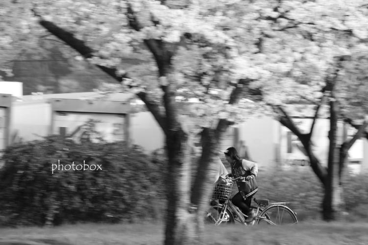 2014/03/31