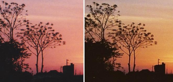 左は自宅プリンタ400dpiでプリントスキャン(1978×1370)   右はフジカラーCD200万画素でフィルムスキャン(1840×1232)